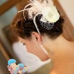 Bridal Haircomb, Crystal Ha..